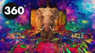 360 (VR) VIDEO - Psychedelic Safari - Summer MIND CHILL 360