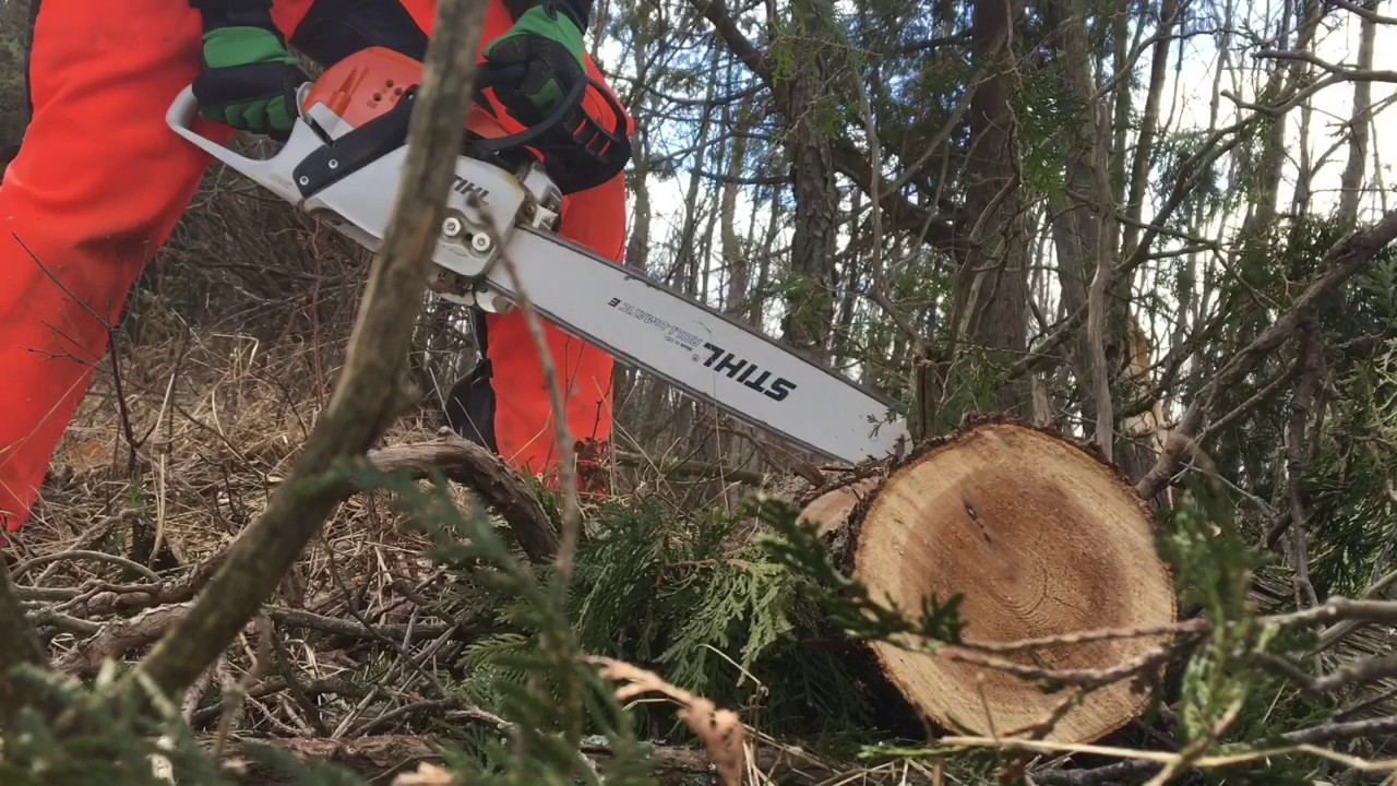 Stihl MS 271 Review - Most Popular Videos