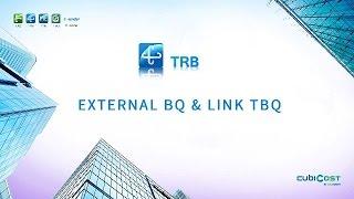 الخارجية BQ & رابط TBQ
