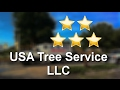 USA Tree Service llc Weeki Wachee Remarkable 5 Star Review by k h.
