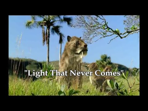 Prehistoric Life Tribute - A Light That Never Comes