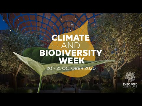 🔴 LIVE | Expo Climate and Biodiversity Week - Day 2