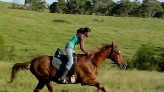Lady Galloping