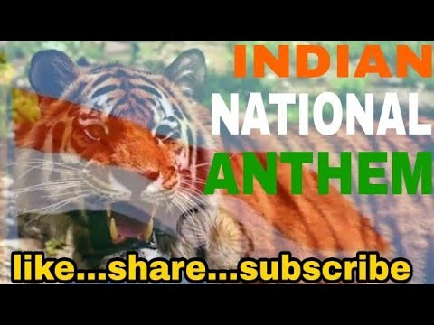 National Anthem Of India - Wild Life | mandar patil