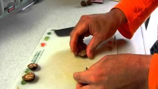 鬼胡桃(オニグルミ・和くるみ)の殻の割り方