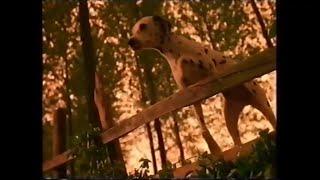 Pedigree Chum Dalmatians - Advert Commercial