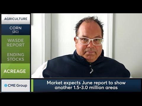 June 10 Grains Commentary: Scott Shellady
