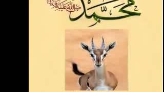 قصيدة الغزالة انشاد مغربي رائع جدا لسي عبد الله البدوي ومجموعته من مولاي بوسلهام