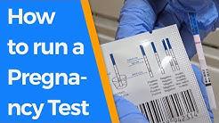 How to run a Pregnancy Test