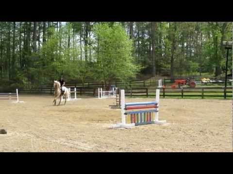 Caspian's first jumper show! Finally Farm, 4/1/12 Training Jumpers (3ft) - Power and Speed
