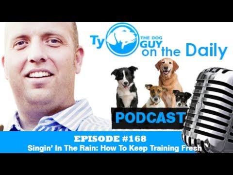 Episode #168 - Singin' In The Rain: How To Keep Training Fresh - Utah Dog Training