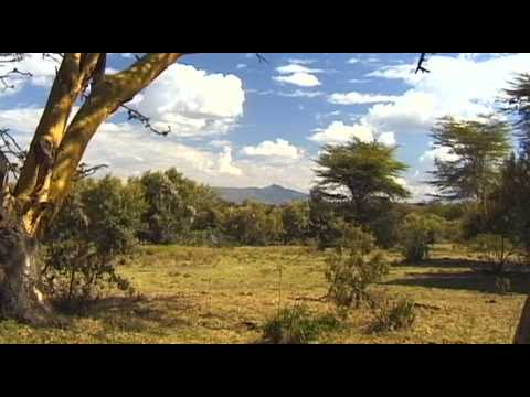 Naivasha Vacation Travel Video Guide