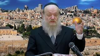 הרב יוסף בן פורת - האם גזלנו מהערבים את ארץ ישראל? (HD1080p) - הרצאה מדהימה!
