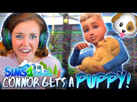🐶CONNOR GOT A PUPPY BUT MY GAME IS BROKEN!?😭(The Sims 4 IN THE SUBURBS #7! 🏘)