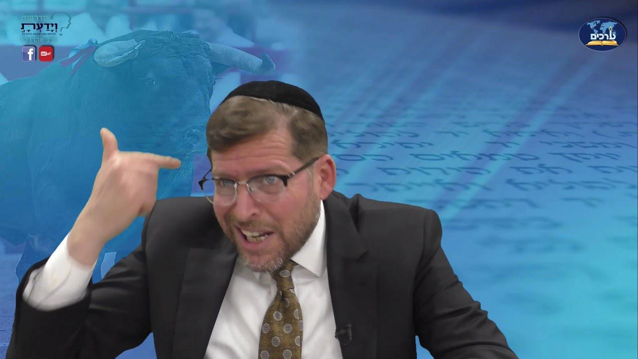 לא אנחנו לא חיות - על צמחונות ומוסריות ביהדות - שיעור 13 - סיכום 2 - הרב אהרן לוי