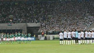 Palmeiras é o brasileiro há mais tempo sem perder como mandante