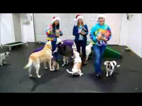 bowwow-fun-towne-12-days-of-christmas---6th-day