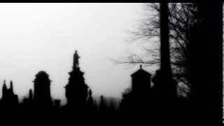 My Dying Bride-Like a Perpetual Funeral