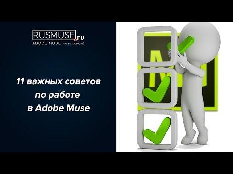 11 советов новичкам для успешной работы в Adobe Muse