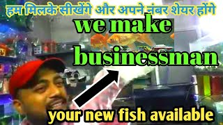 your new fish come how to start your aquarium shop join me