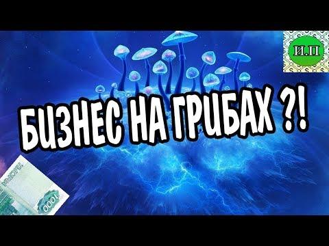 Оффлайн Бизнес за 990 рублей на грибах