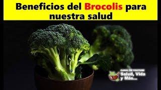Aprende 6 increíbles beneficios del brócoli para la salud