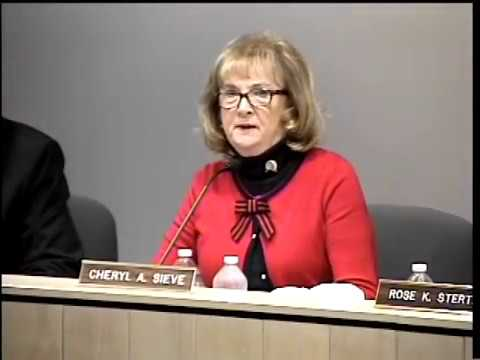 3-28-2018 Delhi Township Board of Trustee Meeting