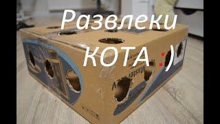 Игра для кошек | Поделки из картона | Бумаги | DIY