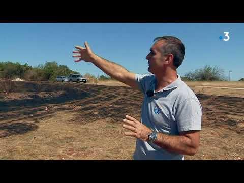 L'incendie de Cajarc (Lot), qui a ravagé 100 hectares de végétation, est maîtrisé