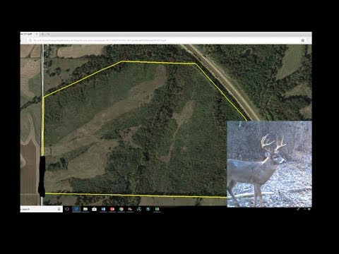BUYING 211 ACRES IN ILLINOIS! WILL IT HAPPEN???-The whole process PART 1