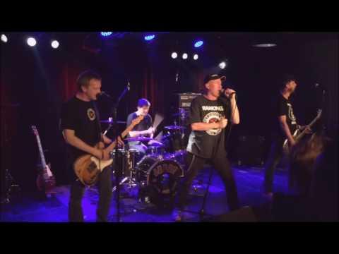 Animal Boys - Live at Le Singe Biel/Bienne - Compilation