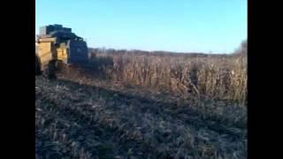 Сампо на  кукурузе(Полтавская область, Гадяч., 2013-01-23T14:39:40.000Z)