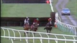 Horse Racing Never see races like this again 1 Newcastle 1990