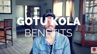 Gotu Kola Benefits: Hair Growth, Cellulite Reduction & Circulation
