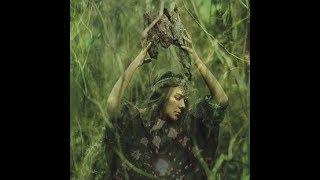 Μαγικά φυτά- Σαμανισμός- με τον Μ. Μουρτζη MD (A.M.)