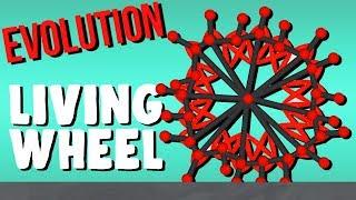 Evolving the Living Wheel! - Evolution Simulator