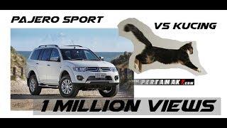 Mitsubishi Pajero Sport gagal parkir tabrak maju mundur Sampai Kucing ketakutan