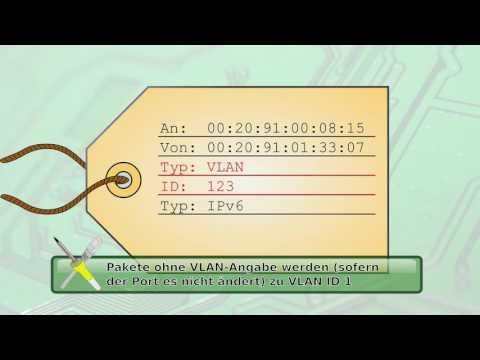 BitBasics - Netzwerk - VLAN