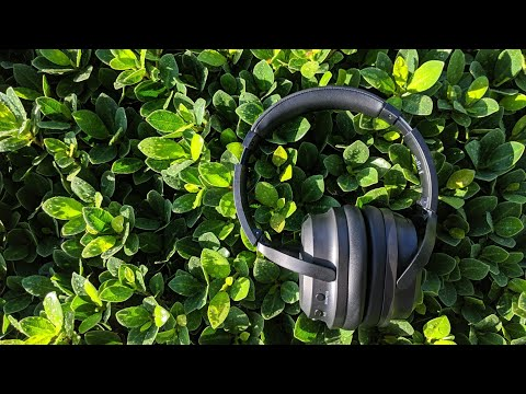 Good Enough? BestBuy Insignia Noise Cancelling Headphones Unboxing + First Impressions