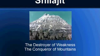 Shilajit Benefits - Get Best Shilajit Powder and Extracts