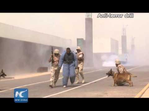 Saudi forces arrest 431 ISIS suspects