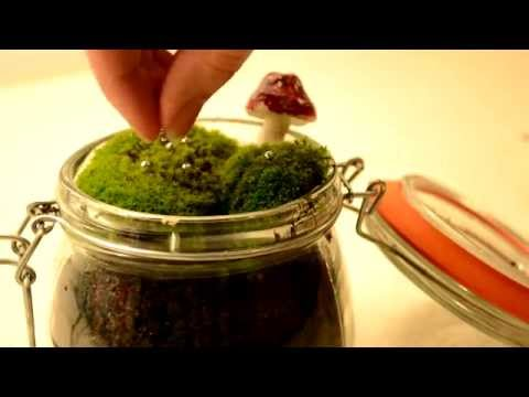 DIY Christmas Decoration with Moss