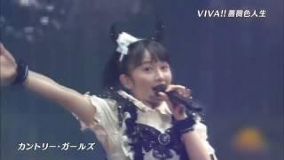 カントリー・ガールズ / VIVA!!薔薇色の人生