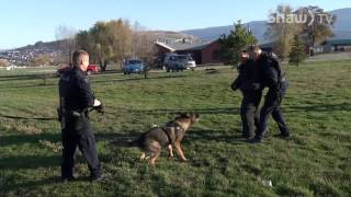 Brad's Bark Episode 14 - RCMP K9 Unit PT1