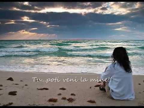CELINE DION - COME TO ME ( tradus in romana )