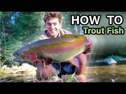 Epic Sight Fishing For TROUT (PERSONAL BEST Rainbow Trout)
