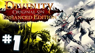 Divinity: Original Sin Enhanced Edition PS4 #1 HERMIONE & RON