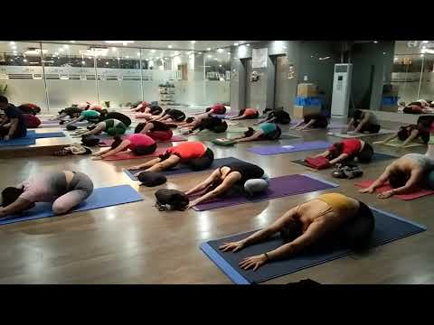 yoga for back  shoulder  neck  sciatica pain