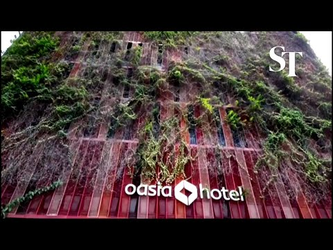 Reboot and recharge at Oasia Hotel Downtown thumbnail