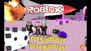 SPACE ADVENTURE BEGINS - Pet Simulator   Roblox